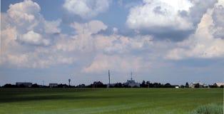 Grünes Weizenfeld und Panorama des blauen Himmels Stockfotos