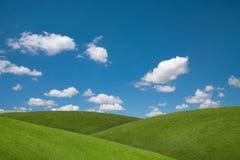 Grünfelder des blauen Himmels Lizenzfreies Stockfoto