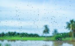 Grünfelder nach Regen hinter dem Fenster, schauen frisch, entspannen sich, Ruhe und Ruhe Stockfotos