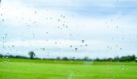 Grünfelder nach Regen hinter dem Fenster, schauen frisch, entspannen sich, Ruhe und Ruhe Stockbilder