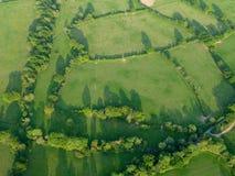 Grünfelder und -bäume gesehen von oben stockfotografie