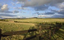 Grünfelder von Colorado Stockfotografie