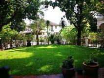 Grünlicher Hinterhof Stockbild