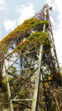 Grünlicher Radioturm Stockfotos