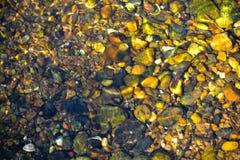 Grünliches Wasser unter kleinen Steinen stockbild
