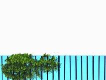 Grünpflanze ist auf blauem hölzernem Stockfotos