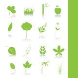 Grünpflanzeikonen-Symbolset Stockfoto