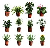 Grünpflanzen des handgemalten Hauses des Aquarells in den Töpfen Set Blumenelemente für Druck Plakat, Karte, die scrapbooking Ent lizenzfreie abbildung