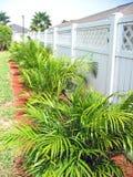 Grünpflanzen entlang weißem Zaun Lizenzfreie Stockfotografie