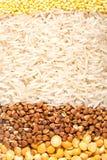 Grützen: pease, Buchweizen, Reis und Hirse Lizenzfreie Stockfotos