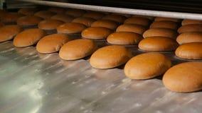 Grżę piec chleb przy wyjściem piekarnik zbiory wideo