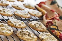 Grże czekoladowego układu scalonego ciastka chłodzi na drucianych stojakach Zdjęcie Stock