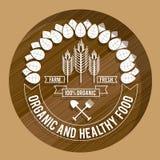 2014 11 15 GR 788 BIG. Food design over brown background, vector illustration Stock Image