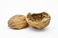 Gr?es marrons bege saud?veis e nutritivos da noz Escudos esmagados da noz imagens de stock