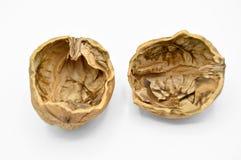 Gr?es marrons bege saud?veis e nutritivos da noz Escudos esmagados da noz fotografia de stock royalty free