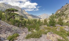 On the GR 20 hiking trail near Asco Corsica. Panoramic view stock photo