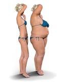 Gör kontra fett tunnare Fotografering för Bildbyråer