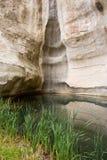 Gr Morro waterhole Stock Afbeeldingen