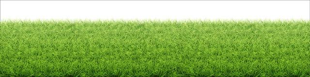 gr?n lawn f?r gr?s Gräns från nytt gräsfält stock illustrationer