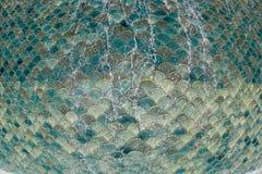 Gr?n mosaik som fl?dar ?ver vatten arkivbilder