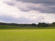 Gr?na f?lt i den Kashubia regionen - nordliga Polen arkivbild