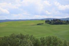Gr?ne H?gel mit Zypressen und gr?ne Wiesen Landschaft Val d ?Orcia im Fr?hjahr Zypressen, H?gel und gr?ne Wiesen stockfotos