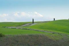 Gr?ne H?gel mit Zypressen und gr?ne Wiesen in Val d ?Orcia, Toskana, Italien stockbild