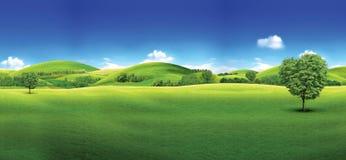 Gr?nes Feld und blauer Himmel von der grünen Rasenfläche und vom hellen blauen Himmel lizenzfreie abbildung
