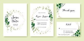 Gr?nhochzeit Einladung, sparen das Datum, danke, rsvp Karte Entwurfsschablone Zitronenblatt, silberner Dollar, olivgrüne Blätter, vektor abbildung