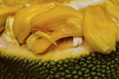 Gr?nt jackfruitsk?ll som formas som en banan arkivfoto