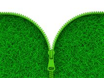 grön zipper Arkivfoto
