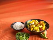 grönsak för småfiskricestir Royaltyfria Foton