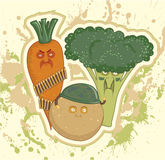 grönsaker för potatisar för broccolimorötter militära Royaltyfri Fotografi
