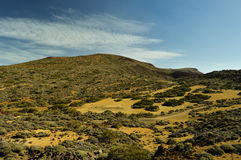 Gr Teide, nationaal park (Vulkaan, Tenerife) Stock Foto