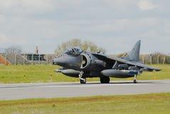 GR9 Harrier Stock Image
