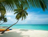 Göra perfekt den tropiska öparadisstranden Fotografering för Bildbyråer