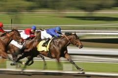 göra sammandrag racen för blurhäströrelse Royaltyfria Foton