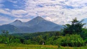 Góra w tropikalnych krajach Zdjęcie Stock