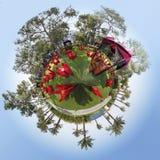 360 graad Royalty-vrije Stock Foto's