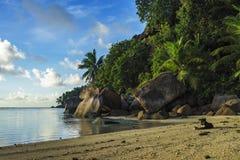 Graaf bij een mooi paradijsstrand op Seychellen 1 Royalty-vrije Stock Foto