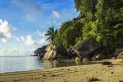 Graaf bij een mooi paradijsstrand op Seychellen 2 Royalty-vrije Stock Foto