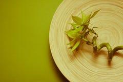 Graan bamboo spa Stock Foto