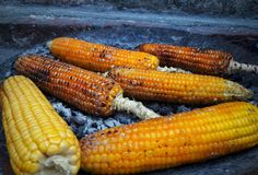 Graan, maïs op houtskool wordt en wordt gekookt gebrand die royalty-vrije stock foto