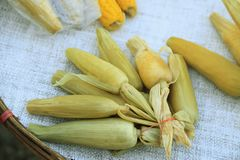 Graan of Maïsverkoop in Aziatische verse voedsel lokale markt royalty-vrije stock afbeelding
