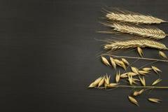 Graan op de donkere houten achtergrond Het concept landbouw en bakkerij Royalty-vrije Stock Afbeeldingen