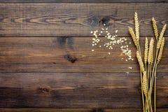 Graangewassenconcept Het havermeel verspreidde zich dichtbij twijgen van tarwe op de donkere houten ruimte van het achtergrond ho Royalty-vrije Stock Fotografie