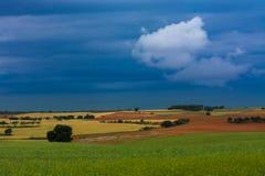 Graangewassengebieden en bewolkte hemel stock afbeeldingen