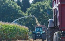 Graanoogst, de maaimachine van de graanfoerage in actie, oogstvrachtwagen met tractor stock afbeeldingen