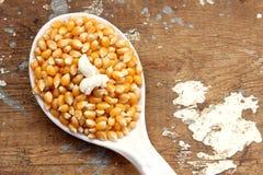 Graanzaden en popcorn stock foto's