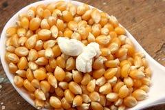 Graanzaden en popcorn stock fotografie